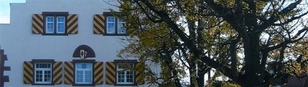 Foto: Ausschnitt vom Rathaus mit den gelb-roten Fensterläden und einem Baum
